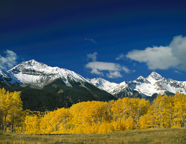 Sunshine Peak (left) and Wilson Peak (right), with autumn Aspen trees, Telluride, Colorado, USA.