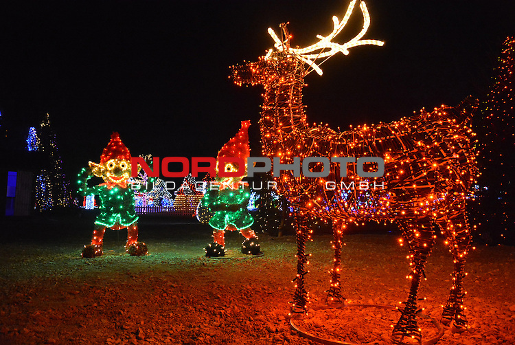 30.11.2016., Grabovnica, Croatia - The 67-year old former telecommunications engineer Zlatko Salaj has turned his country estate in Grabovnica, central Croatia, into a festival of light and color that attracts thousands of visitors every year. This year Salaj has lit olmost 2 million lights. <br /> Photo: Damir Spehar/PIXSELL