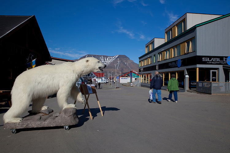 Stuffed polar bear outside a tourist shop in Longyearbyen, Svalbard. The northernmost settlement with more than 1,000 people on earth, and is quite well-serviced town, with an airport and university and hospital. There are more polar bears than people in Svalbard.