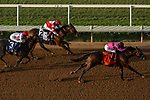 DEL MAR, CA  SEPTEMBER 3: #7 Game Winner, ridden by Mario Gutierrez, #2 Rowayton, ridden by Drayden Van Dyke, and #3 Roadster, ridden by Mike Smith, in the stretch of  the Del Mar Futurity (Grade l) on September 3, 2018 at Del Mar Thorougbred Club at Del Mar, CA.(Photo by Casey Phillips/Eclipse Sportswire/Getty Images)