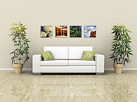"""Nature, squared"" is a collection of intimate views of the many facets of nature.  Perfect for small spaces or grouped together to create a visually stimulating montage, each print measures 10""x10"" and is printed on your choice of canvas, metal, or Lumachromic acrylic face mount, ready to hang. <br />
