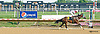 Nekia's Edge winning at Delaware Park on 8/31/15