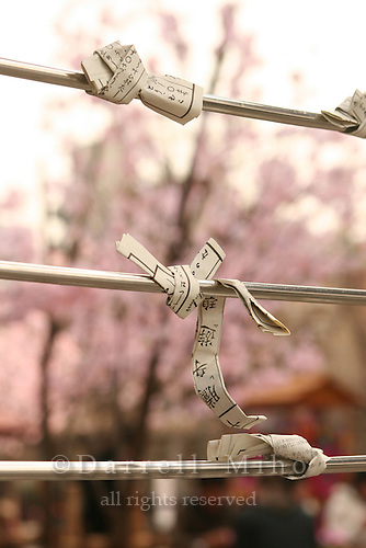 Mar 9, 2006; Tokyo, JPN; Asakusa.Mikuji (written fortunes) are tied to a wire just outside the Senso-ji Buddhist temple...Photo credit: Darrell Miho