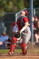 Indiana Hoosiers catcher Ryan Fineman (29) during a game against the Illinois State Redbirds on March 4, 2016 at North Charlotte Regional Park in Port Charlotte, Florida.  Indiana defeated Illinois State 14-1.  (Mike Janes/Four Seam Images)