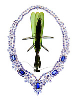 Praying Mantis & Harry Winston Necklace