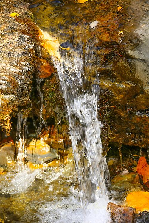 Montana creek in autumn