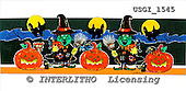 GIORDANO, CUTE ANIMALS, LUSTIGE TIERE, ANIMALITOS DIVERTIDOS, Halloween, paintings+++++,USGI1545,#AC#