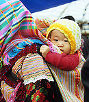 Flower Hmong Baby 04 - Traditionally dressed Flower Hmong woman with baby in a back carrier, Saturday market, Can Cau, NW Viet Nam