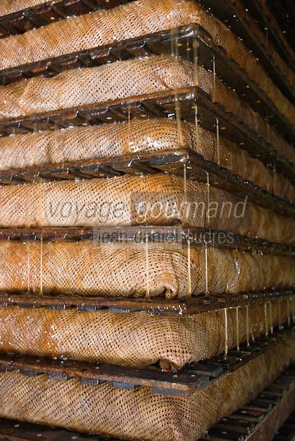 Europe/France/Normandie/Basse-Normandie/14/Calvados/Pays d'Auge/Saint-Laurent-du-Mont: producteur de cidre du Pays d'Auge - travail au pressoir - le mout s'écoule