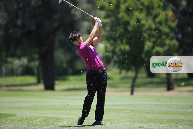 /im/ plays approach to the 18th during Round Two of the 2016 BMW SA Open hosted by City of Ekurhuleni, played at the Glendower Golf Club, Gauteng, Johannesburg, South Africa.  08/01/2016. Picture: Golffile | David Lloyd<br /> <br /> All photos usage must carry mandatory copyright credit (&copy; Golffile | David Lloyd)