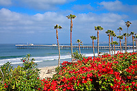 The Coast Of San Clemente And The Pier