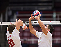 STANFORD, CA - January 5, 2019: Mason Tufuga, Cole Paullin at Maples Pavilion. The Stanford Cardinal defeated UC Santa Cruz 25-11, 25-17, 25-15.