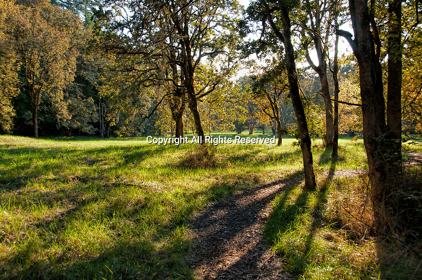 Early Fall at Howard Buford County Park (aka Mt. Pisgah Arboretum), outside Eugene, Oregon.