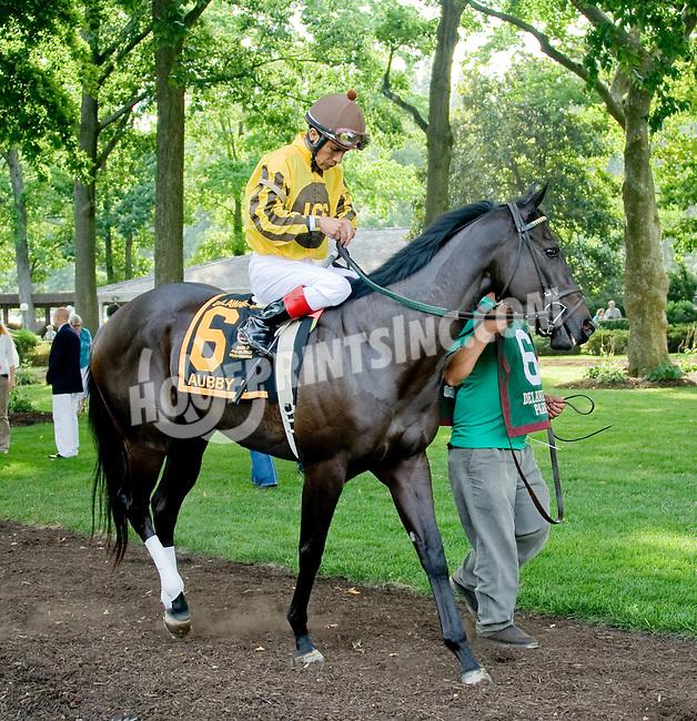 Aubby K before The Delaware Oaks (gr 2) at Delaware Park on 7/14/12