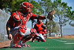 2012-02-24 MLB: Nationals Spring Training