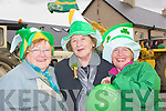 DAY OUT: A day out for Breda O'Connor, Mary Fuller and Geraldine Finucane as they watched the Kilflynn St patrick's Day parade on Wednesday.................................. ....