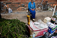 A woman sells Tibetan Buddhist prayer offering materials, including pine branches, nuts, and sugar, outside a temple at the Labrang Monastery in Xiahe, Gansu, China. Xiahe, home of the Labrang Monastery, is an important site for Tibetan Buddhists.  The population of the town is divided between ethnic Tibetans, Muslims, and Han Chinese.