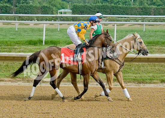 The Absolute One before The Par Four Stakes at Delaware Park on 7/12/12