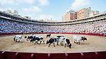 """Feria de Julio Valencia 2013.<br /> Mano a mano entre Julian Lopez """"El Juli"""" y Jose Mari Manzanares con toros de Domingo Hernandez y Garcigrande.<br /> 26 de julio de 2013 - Valencia (España)."""