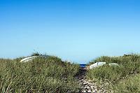 Dune path to the beach.