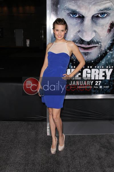 Maggie Grace<br /> at &quot;The Grey&quot; Los Angeles Premiere, Regal Cinemas, Los Angeles, CA 01-11-12<br /> David Edwards/DailyCeleb.com 818-249-4998