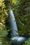 Miller Falls, Gifford Pinchot National Forest