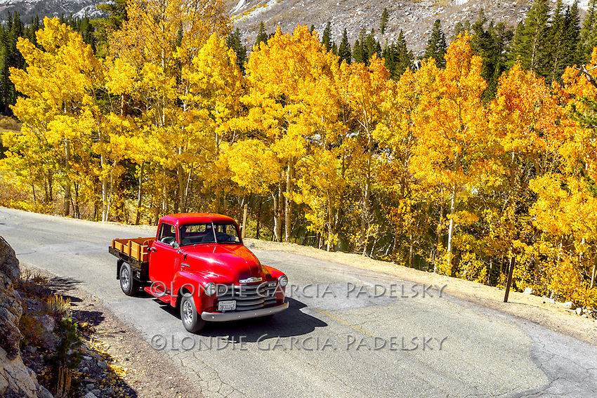 1955 Red Chevy Truck cruising the Eastern Sierra, California