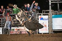 SEBRA - Appomattox, VA - 10.10.15 - Round 2 Bulls