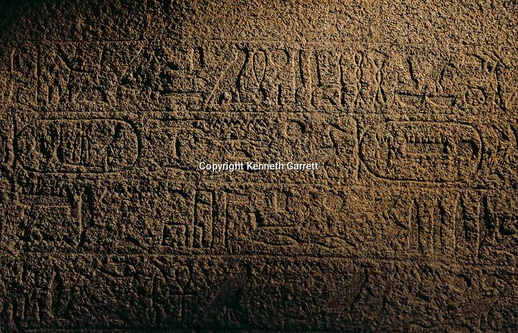 Egypt; Ancient Cultures; Archaeologist; Salima Ikram; Kharga Oasis; Desert; oasis; Hibis, Darius I, Late Period