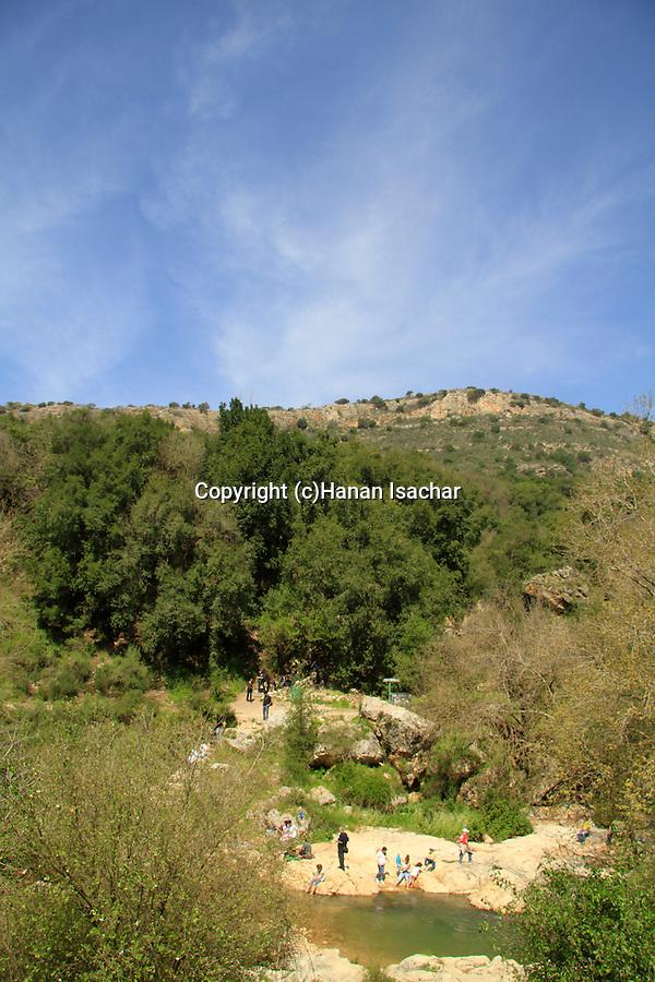Israel, Upper Galilee, Ein Tamir in Nahal Kziv