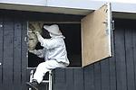 """Foto: VidiPhoto<br /> <br /> <br /> COTHEN – Ongediertebestrijder Ed de Groot verwijdert donderdag op de zolder van een voormalige kwekerij in het Utrechtse Cothen het tot nog toe grootste wespennest dat hij in zijn leven is tegengekomen. Het enorme gevaarte van 70x50x30 cm (meer dan 100 liter inhoud) is dit jaar veertien keer uitgebouwd door het wespenvolk. Dat is uitzonderlijk veel. Oorzaak is de hete zomer van vorig jaar en de daaropvolgende droge winter en voorjaar, waardoor er meer koninginnen zijn dan in andere jaren. De telefoon staat bij de eigenaar van het bestrijdingsbedrijf """"1Minder"""" uit Cothen op dit moment roodgloeiend vanwege de enorme overlast, terwijl het echte seizoen nog moet beginnen. Ruim een week eerder dan andere jaren. Het wespenprobleem neemt dit jaar naar verwachting enorm toe door de weersomstandigheden."""
