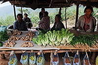 LAO PDR, people sell edible products from the forest / Laos, Bergbewohner verkaufen essbare Produkte aus dem Wald