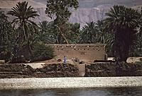 Afrique/Egypte/Env de Louxor/Ancienne Thèbes: La vallée du Nil