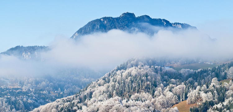 Frost covered trees in Berchtesgaden, Germany