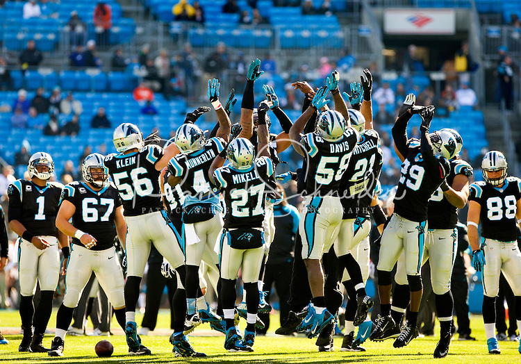 Sports action photography of the Carolina Panthers against the Tampa Bay Bucks during their NFL game at Bank of America Stadium in Charlotte, North Carolina.  <br /> <br /> Charlotte Photographer - Patrick SchneiderPhoto.com