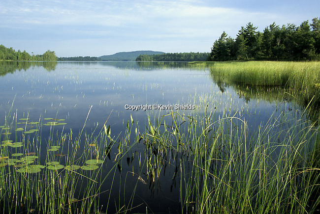 View of Pocomoonshine Lake and Pocomoonshine Mountain in Washington County, Maine, USA