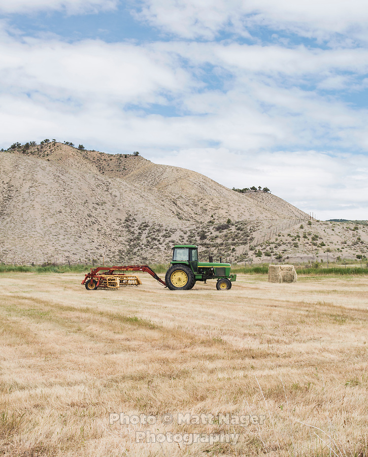 A hay field near Montrose, Colorado, Tuesday, July 7, 2015. <br /> <br /> Photo by Matt Nager