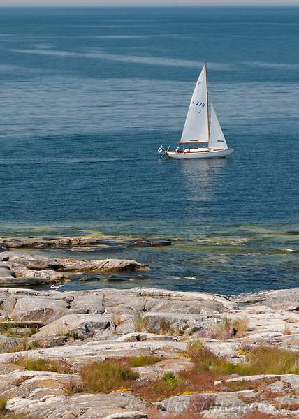 Sailboat cruises along rocky shore on lazy summer afternoon.