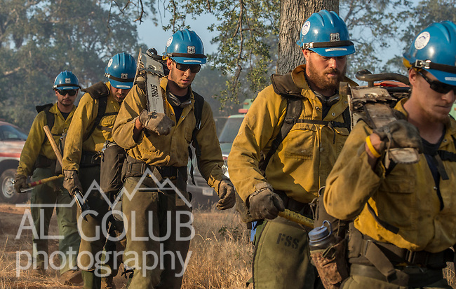 June 10, 2014--The Haigh Fire was 130 acres near Coulterville, California. Firefighters from Cal Fire and Hot Shots from the Stanislaus Forest quickly controlled the fire.  Photo by Al Golub/Golub Photography