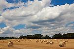 Europa, DEU, Deutschland, Nordrhein Westfalen, NRW, Niederrhein, Rheinland, Xanten-Birten, Fuerstenberg, Sommer, Agrarlandschaft, Getreidefeld n. d. Ernte, Strohballen, Rundballen, Himmel, Wolken, Cumuluswolken, Kategorien und Themen, Natur, Umwelt, Landschaft, Jahreszeiten, Stimmungen, Landschaftsfotografie, Landschaften, Landschaftsphoto, Landschaftsphotographie, Wetter, Himmel, Wolken, Wolkenkunde, Wetterbeobachtung, Wetterelemente, Wetterlage, Wetterkunde, Witterung, Witterungsbedingungen, Wettererscheinungen, Meteorologie, Bauernregeln, Wettervorhersage, Wolkenfotografie, Wetterphaenomene, Wolkenklassifikation, Wolkenbilder, Wolkenfoto<br /> <br /> [Fuer die Nutzung gelten die jeweils gueltigen Allgemeinen Liefer-und Geschaeftsbedingungen. Nutzung nur gegen Verwendungsmeldung und Nachweis. Download der AGB unter http://www.image-box.com oder werden auf Anfrage zugesendet. Freigabe ist vorher erforderlich. Jede Nutzung des Fotos ist honorarpflichtig gemaess derzeit gueltiger MFM Liste - Kontakt, Uwe Schmid-Fotografie, Duisburg, Tel. (+49).2065.677997, ..archiv@image-box.com, www.image-box.com]