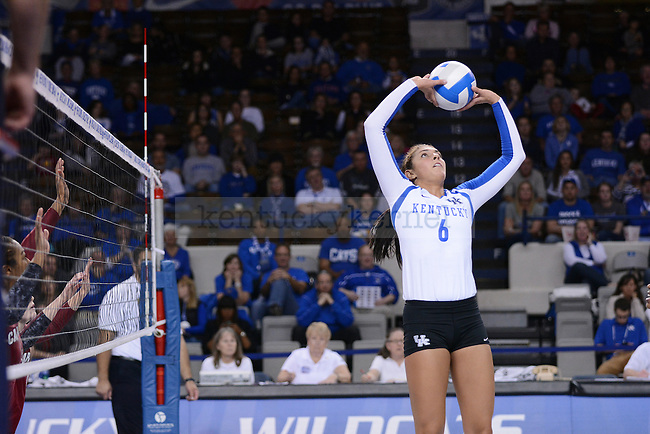 Sophomore Morgan Bergren sets the ball against South Carolina in Lexington, Ky., on Friday, November 8, 2013. Photo by Caleb Gregg | Staff