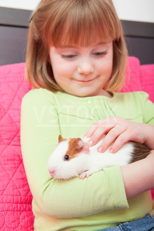 USA, Illinois, Metamora, Girl (4-5) holding guinea pig