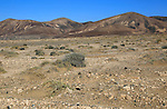 Dry barren mountain landscape near Paraja, Fuerteventura, Canary Islands, Spain