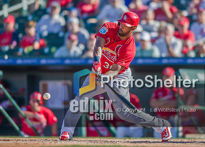 6 March 2016: St. Louis Cardinals outfielder Carlos Peguero in action during a Spring Training pre-season game against the Washington Nationals at Roger Dean Stadium in Jupiter, Florida. The Nationals defeated the Cardinals 5-2 in Grapefruit League play. Mandatory Credit: Ed Wolfstein Photo *** RAW (NEF) Image File Available ***