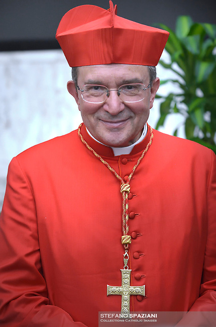Cardinal Giuseppe Petrocchi, Pope Francis leads a consistory for the creation of five new cardinals  at St Peter's basilica in Vatican on  June 28, 2018
