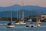Boats at anchor in Morro Bay, California