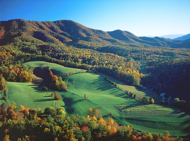 Autumn Cherokee National Forest