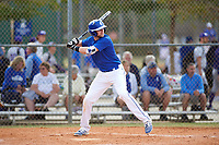 Illinois College Blueboys third baseman Taw Fredrickson (24) at bat during a game against the Edgewood Eagles on March 14, 2017 at Terry Park in Fort Myers, Florida.  Edgewood defeated Illinois College 11-2.  (Mike Janes/Four Seam Images)