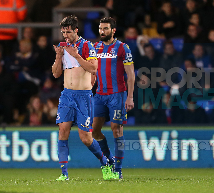 Crystal Palace's Scott Dann looks on dejected after Sunderland's opening goal<br /> <br /> - Barclays Premier League - Crystal Palace vs Sunderland- Selhurst Park - London - England - 3rd November 2014  - Picture David Klein/Sportimage