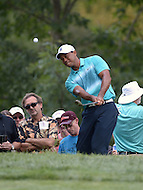 Gainesville, VA - August 1, 2015: Tiger Woods chips on hole 3 during the Quicken Loans National at the Robert Trent Jones Golf Club in Gainesville, VA, August 1, 2015. Woods finished the round at +3, placing him 9 strokes off the lead.  (Photo by Don Baxter/Media Images International)